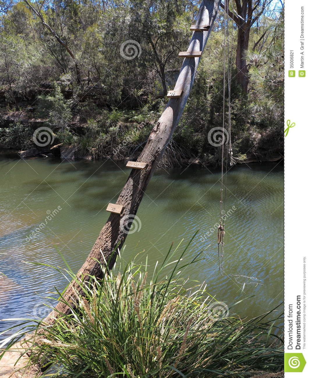 Tree bent over river with swing stock image image 35006821 for Swing over water