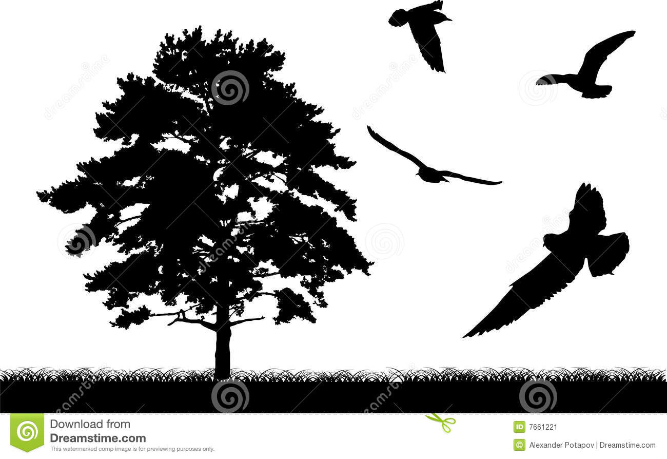 Tree And Birds Silhouette Stock Image - Image: 7661221