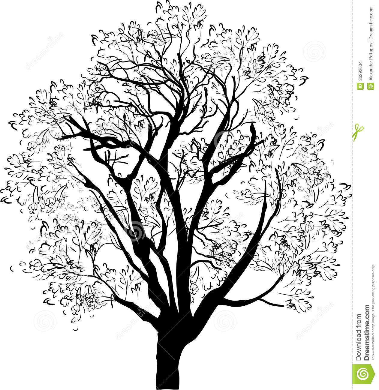 Illustration with tree sketch isolated on white background