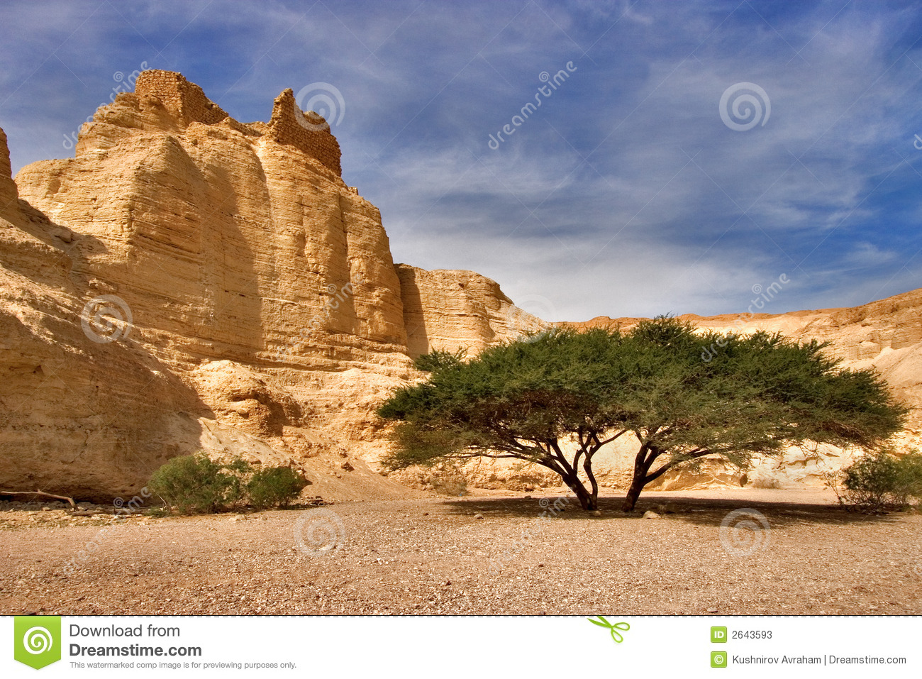 ancient mountains near to an oasis ein bokek at coast of the dead sea