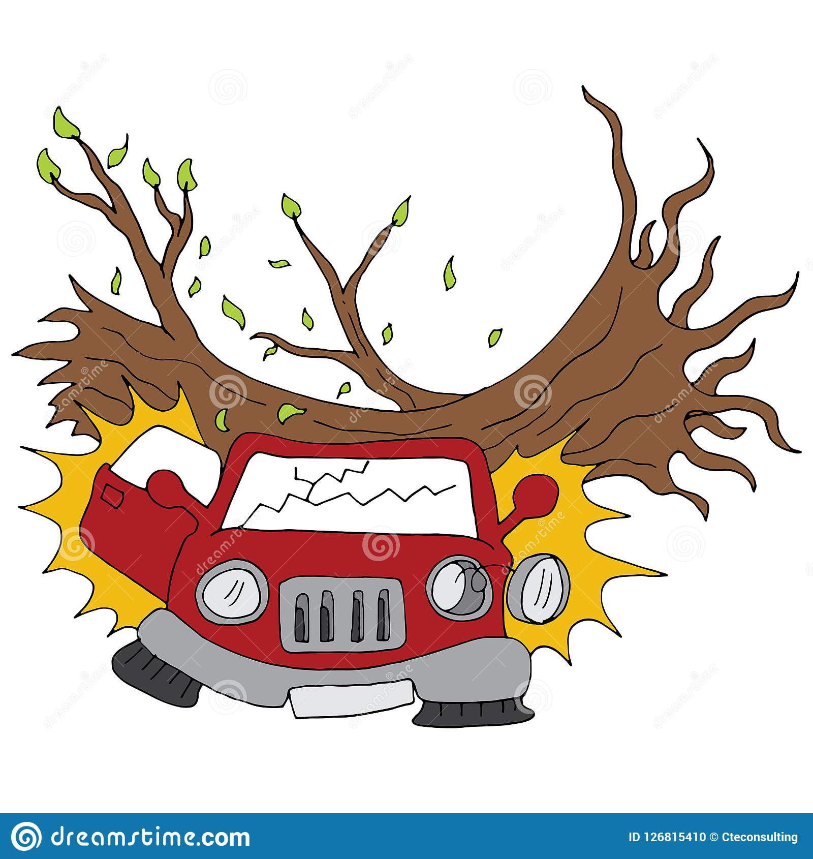 Tree Branch Damages Parked Car