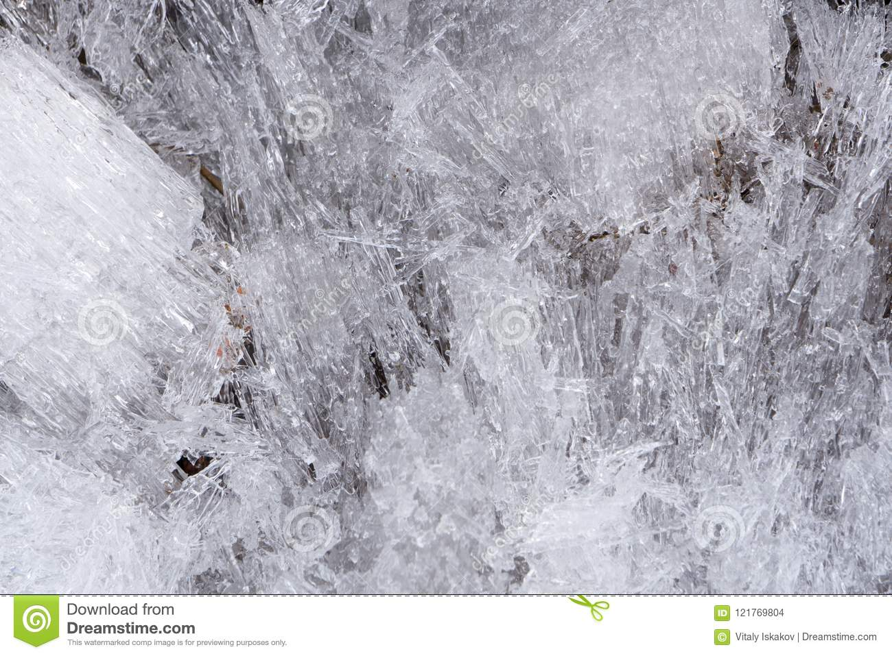 Tree Branch With Icicles. Close-up Of Ice On A Tree. Closeup Of ...