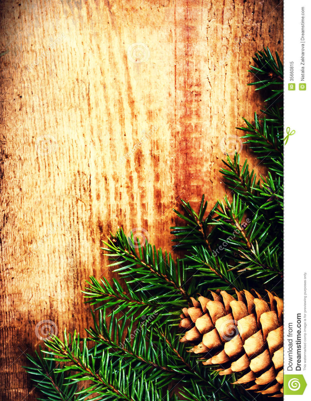 Tree Branch On Wooden Background With Forest Cone And Copy