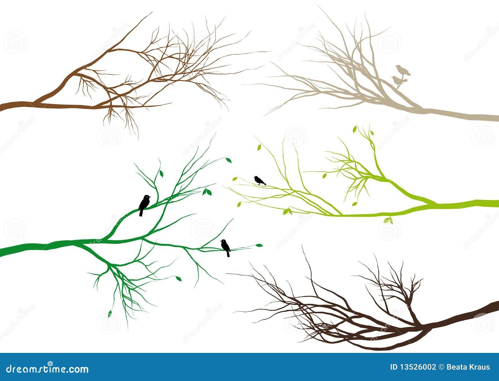 Tree Branches Vector Stock Vector Beaubelle 2657082