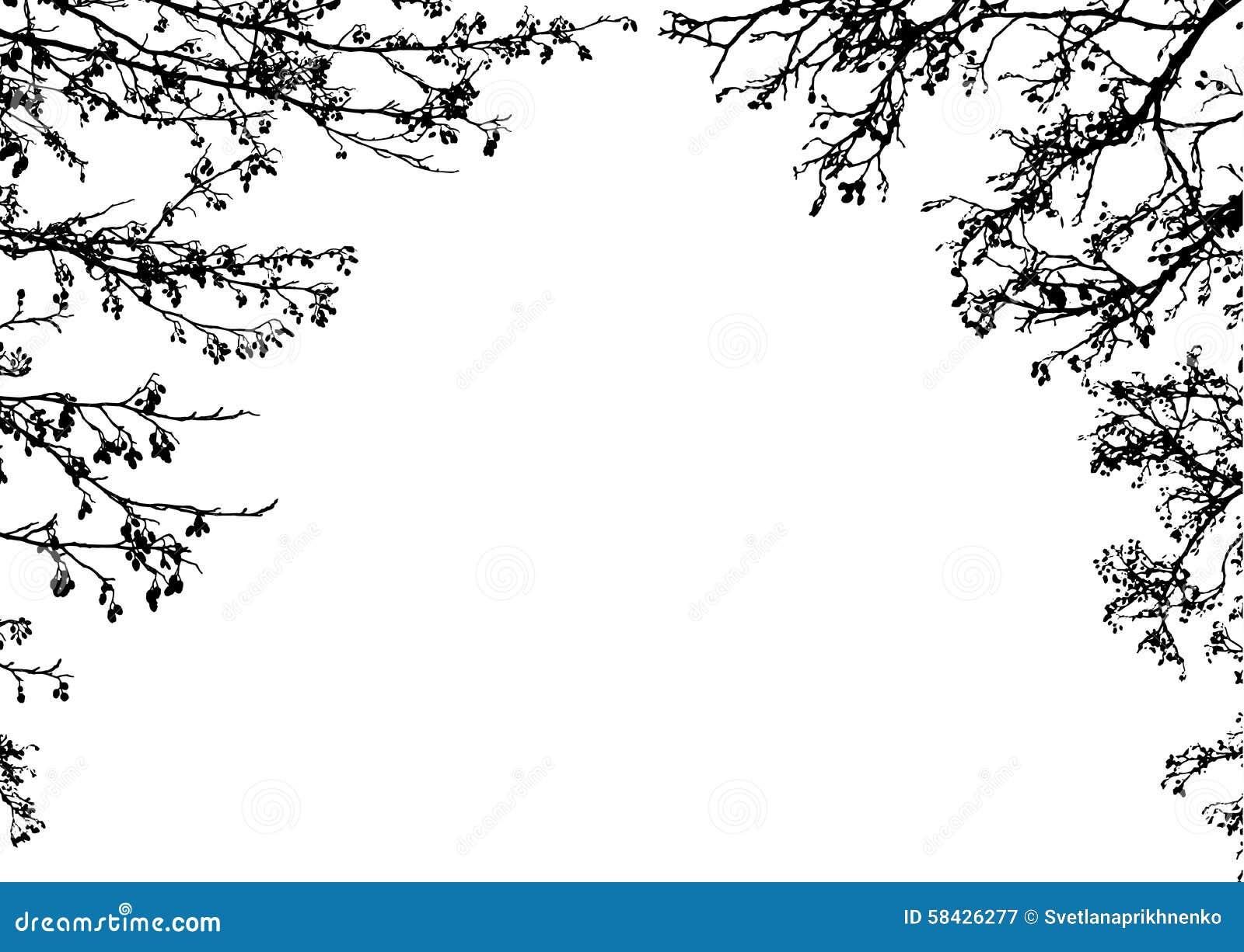 clipart tree branch borders - photo #7