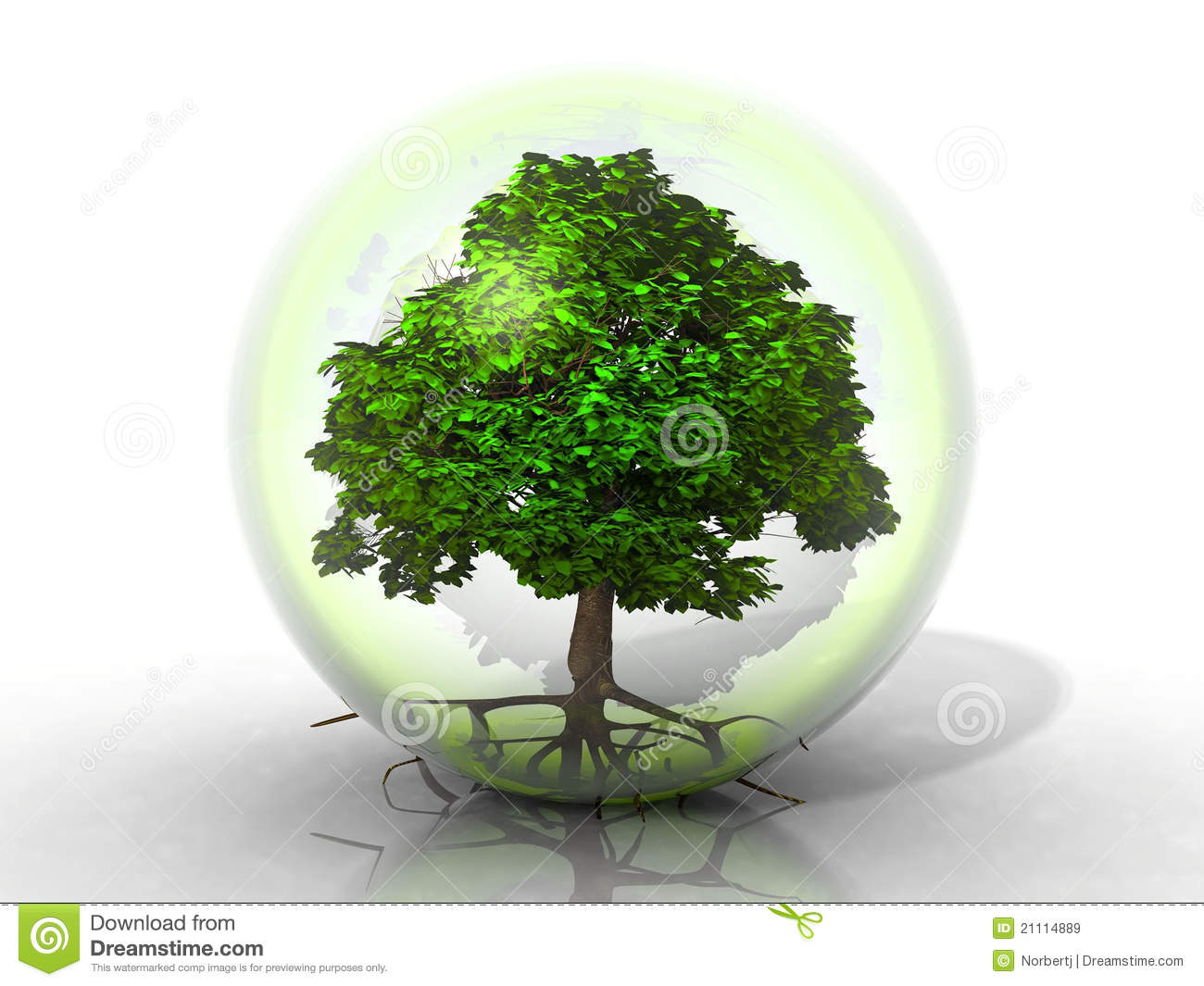 tree in a bubble stock illustration illustration of outside 21114889. Black Bedroom Furniture Sets. Home Design Ideas