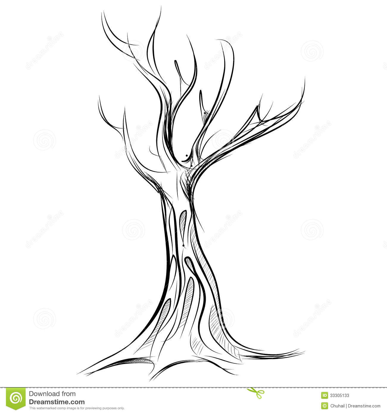 Tree Cartoon Icon Isolated On White Stock Vector - Illustration Of Icon Outline 33305133