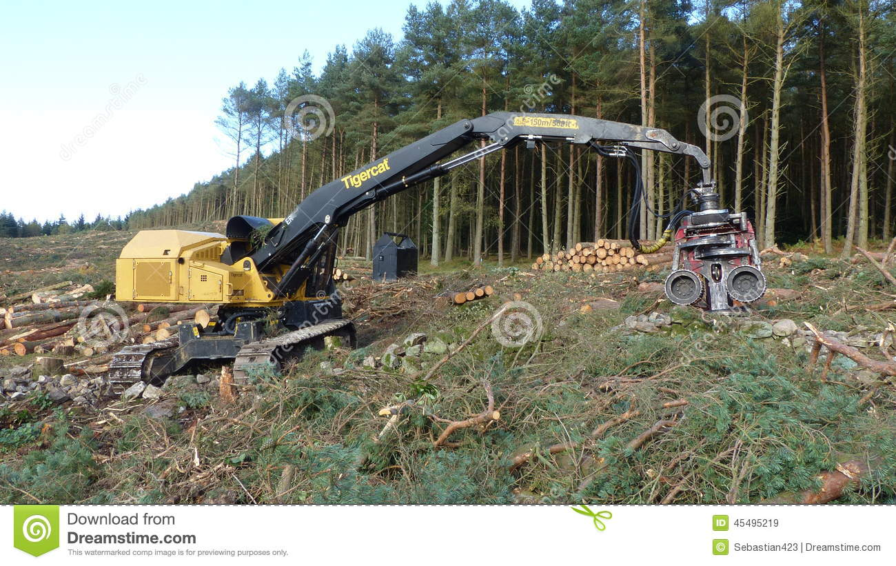 machine for cutting trees