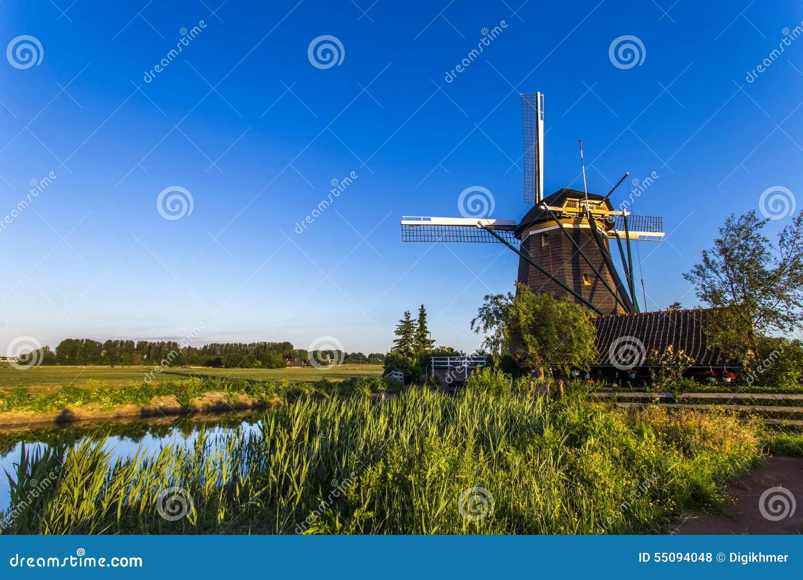 tree dutch windmills stock photo image of alternative 55094048