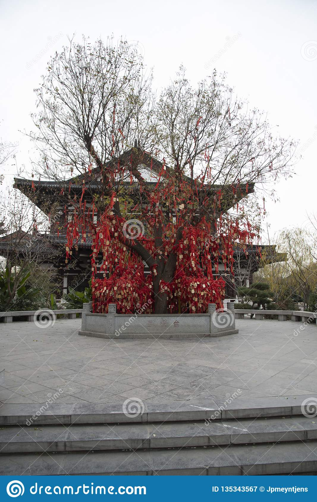 The Tree Of Eternal Love Promises In China,- Imagen