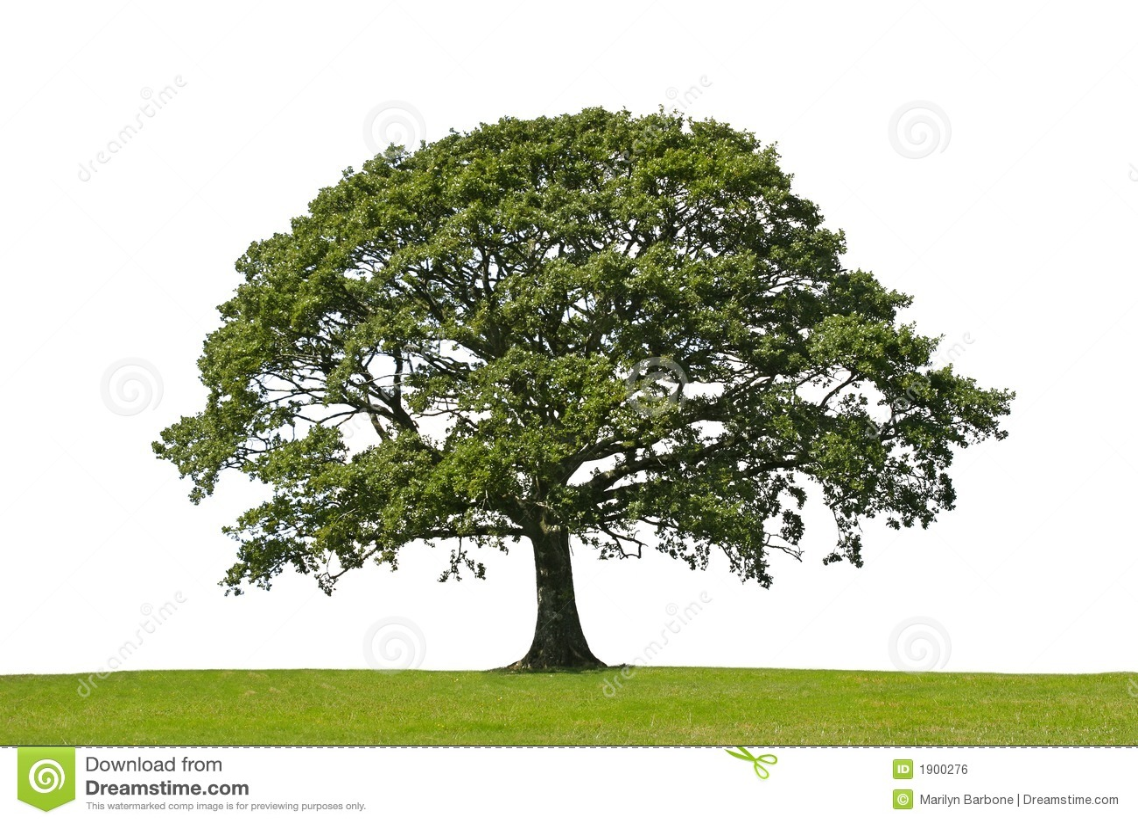 Tree för oakstrykesymbol