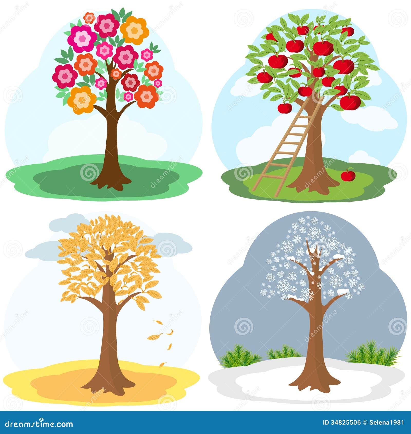 Tree four seasons stock vector. Illustration of leaf ...