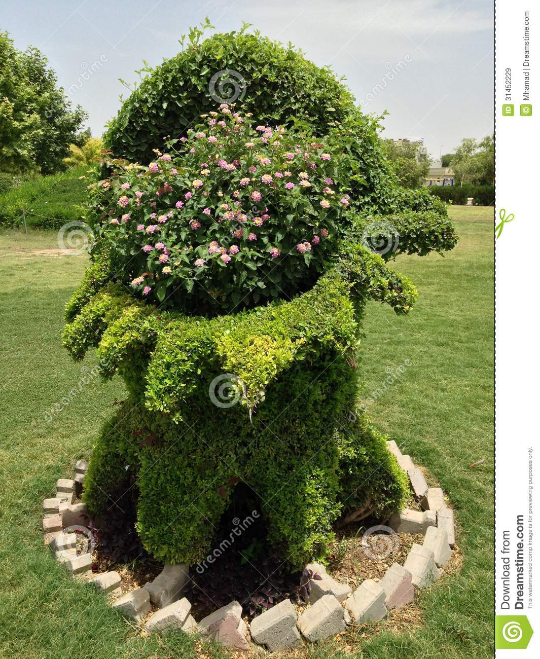 Tree In Garden Royalty Free Stock Images Image 31452229
