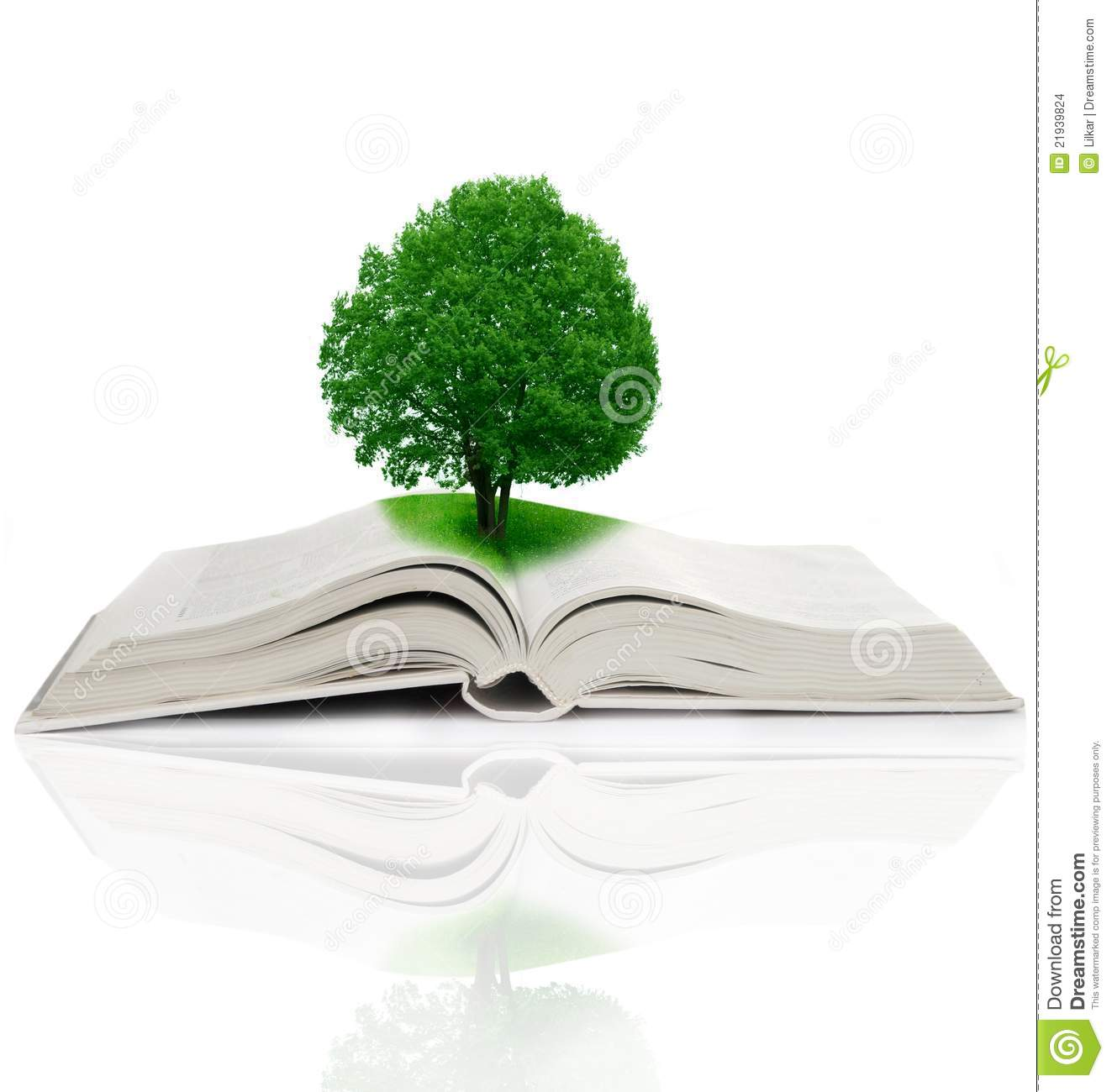 Tree Growing From A Book Stock Images - Image: 21939824