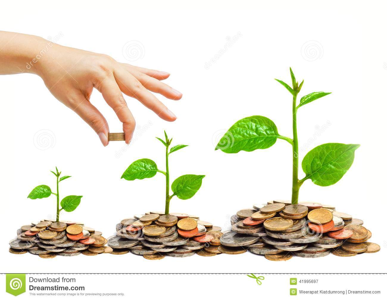 Tree growing on coins stock image image of green forestation 41995697 - Money saving tips in gardening ...
