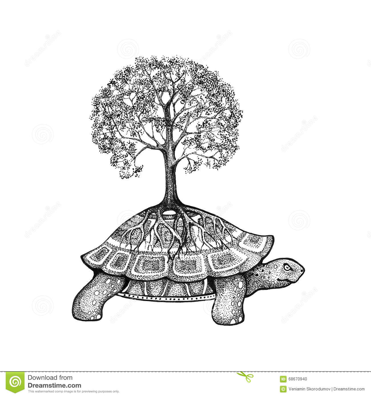 Tree Growing On A Turtle Stock
