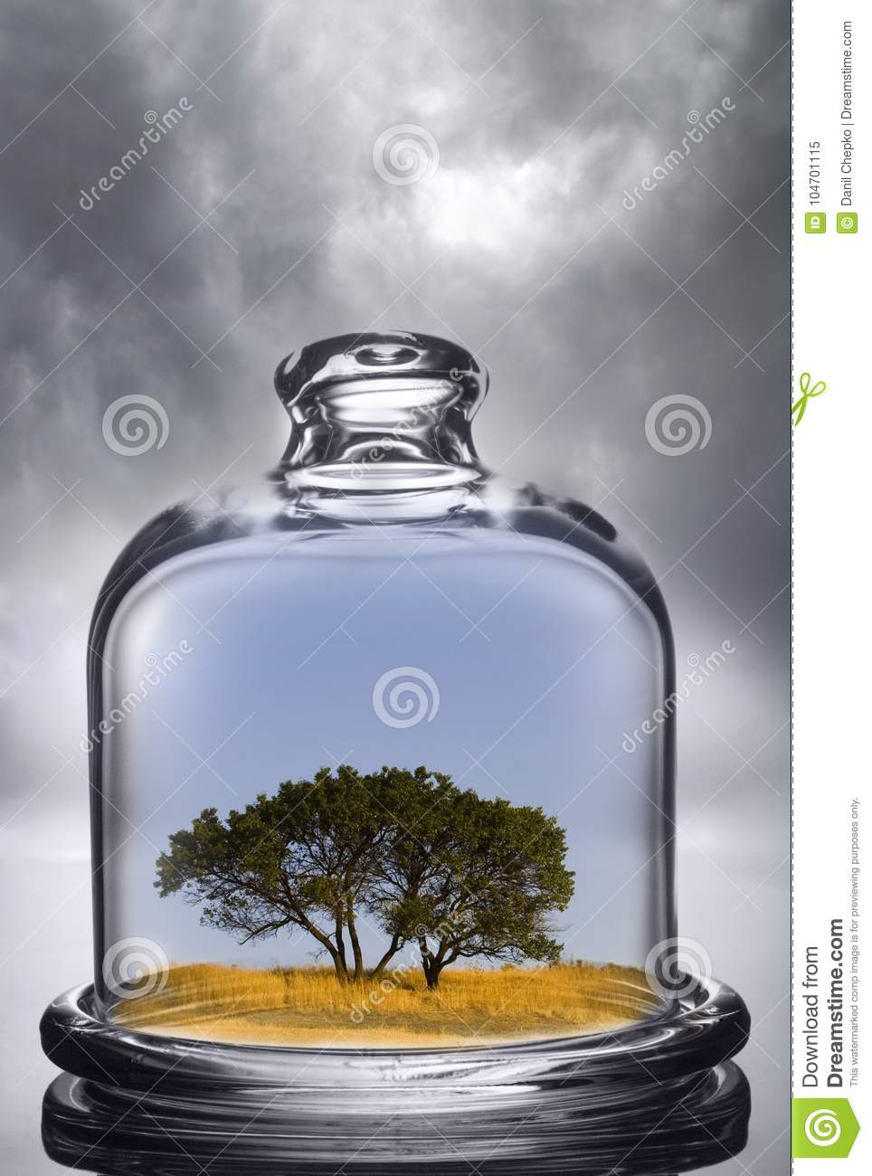 Tree growing under a glass dome on cloud background. Environment