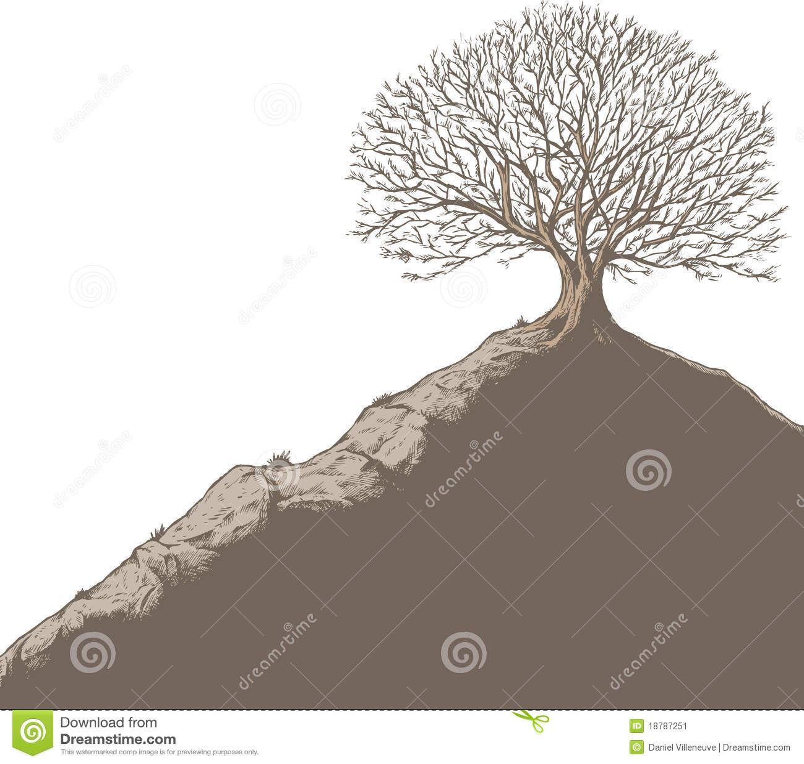 Tree On A Hill Stock Vector. Image Of Tree, Hillside