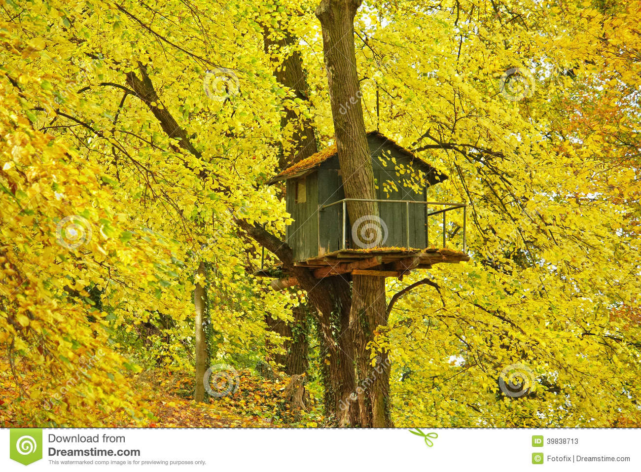 Tree house stock photo image 39838713 for Colorful tree house