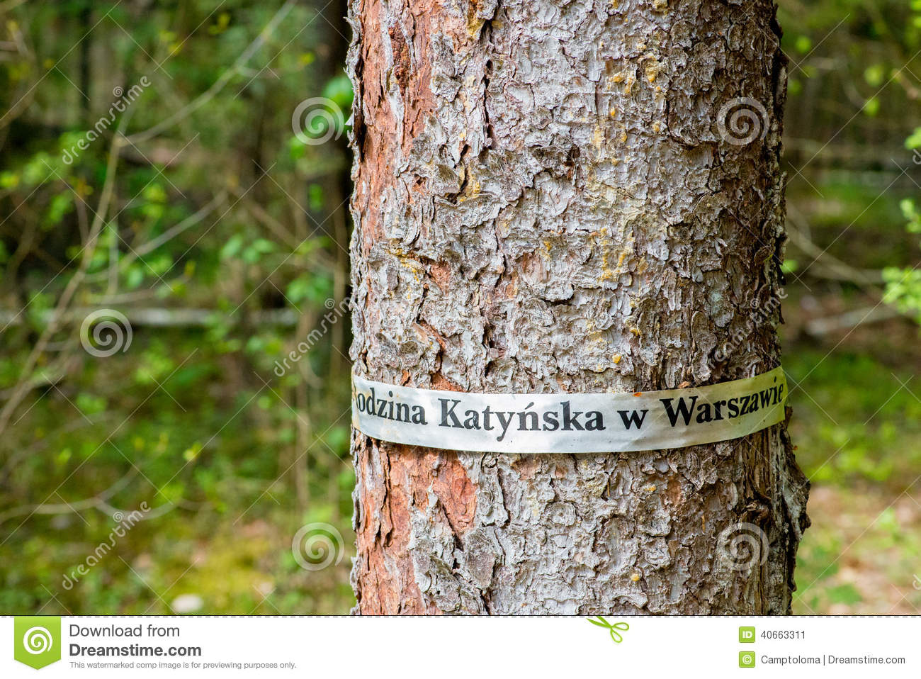 Tree In Katyn Forest (Russia, Smolensk Region) Stock Image - Image Katyn Map With Russia on lidice map, the kite runner map, berlin map, kokoda map, yaroslavl map, casablanca map, khartoum map, midway map, aftermath map, inventory map, unbroken map, europe map, danzig map, romania map, big animal map, armenian genocide map, war map,