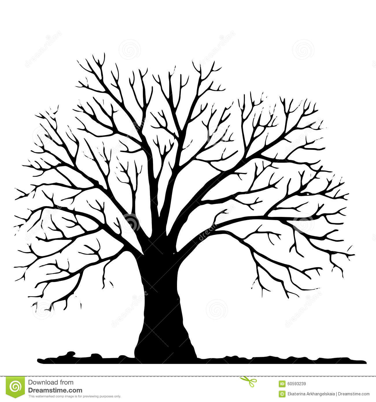 Tree Without Leaves Silhouette Stock Vector Image 60593239