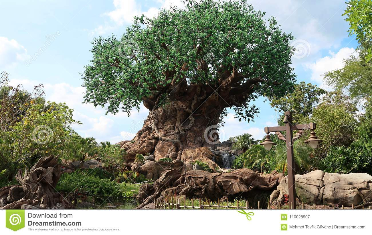 The Tree of Life is in the Disney World in Orlando.