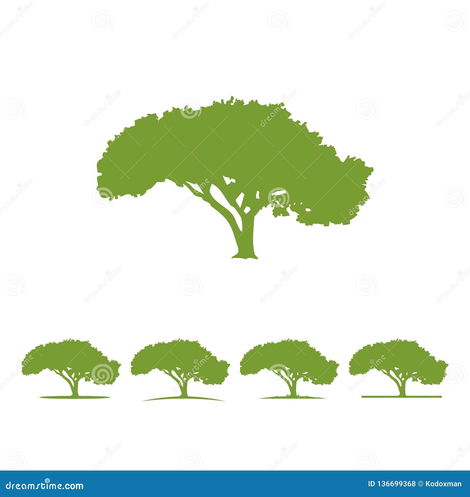 Tree logo illustration Vector silhouette