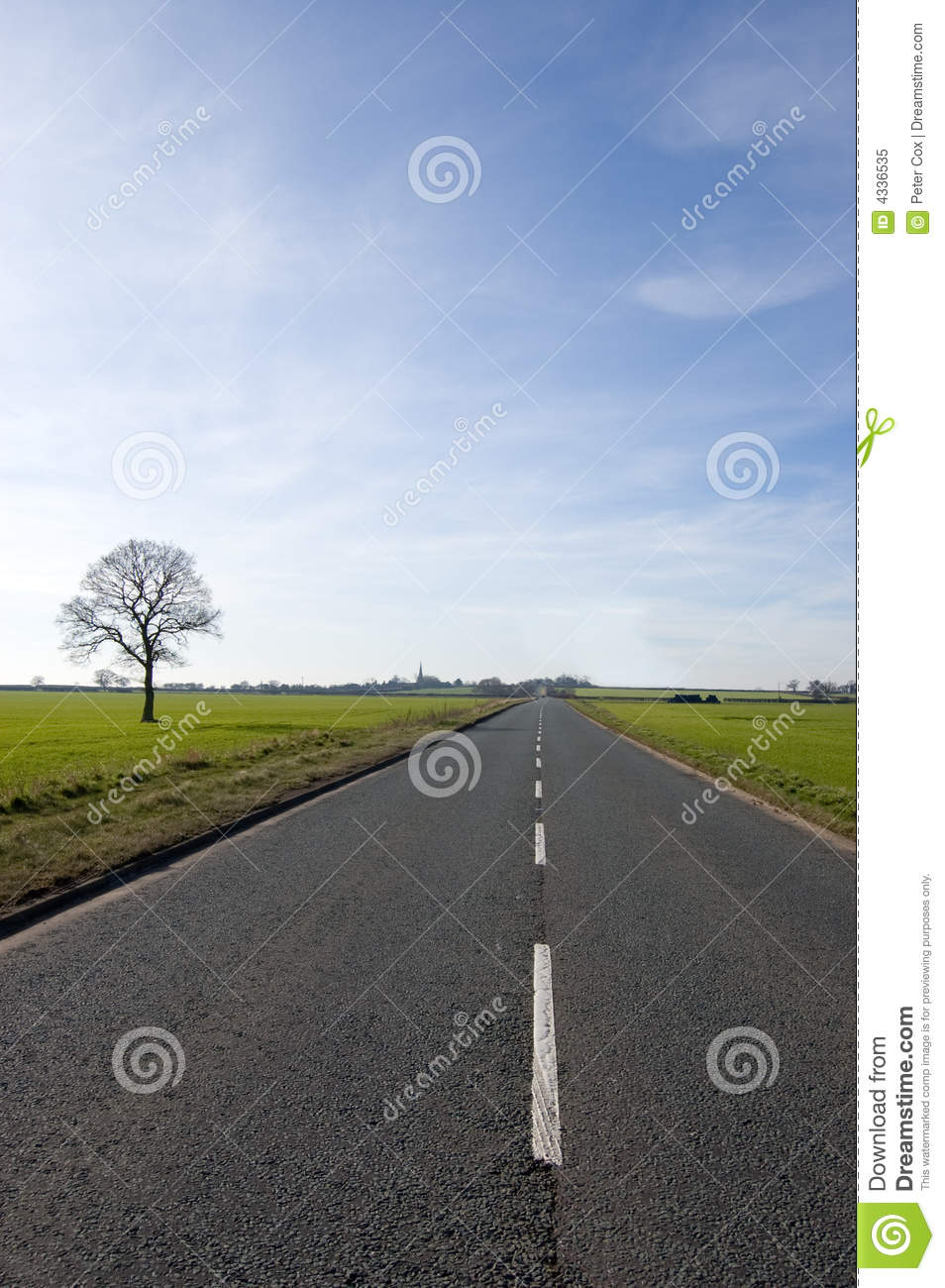 Tree and long road