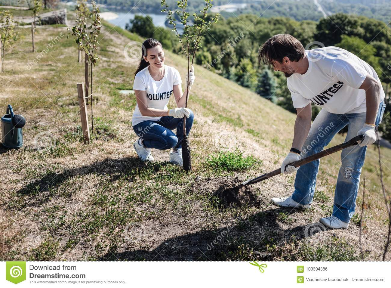 Nice Pleasant Man Digging A Hole Stock Photo Image Of