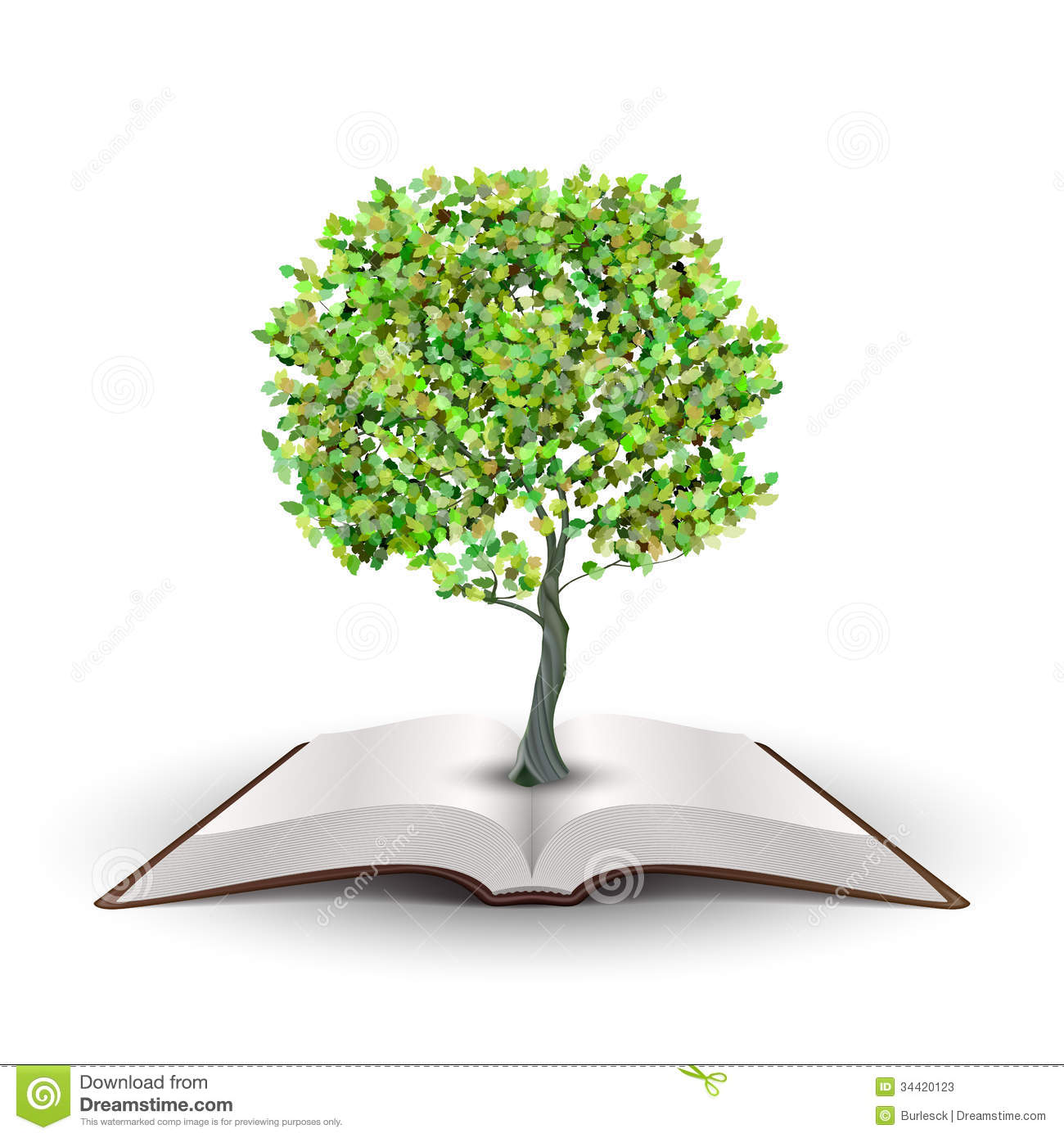 Tree growing from open book Vector isolated on white.