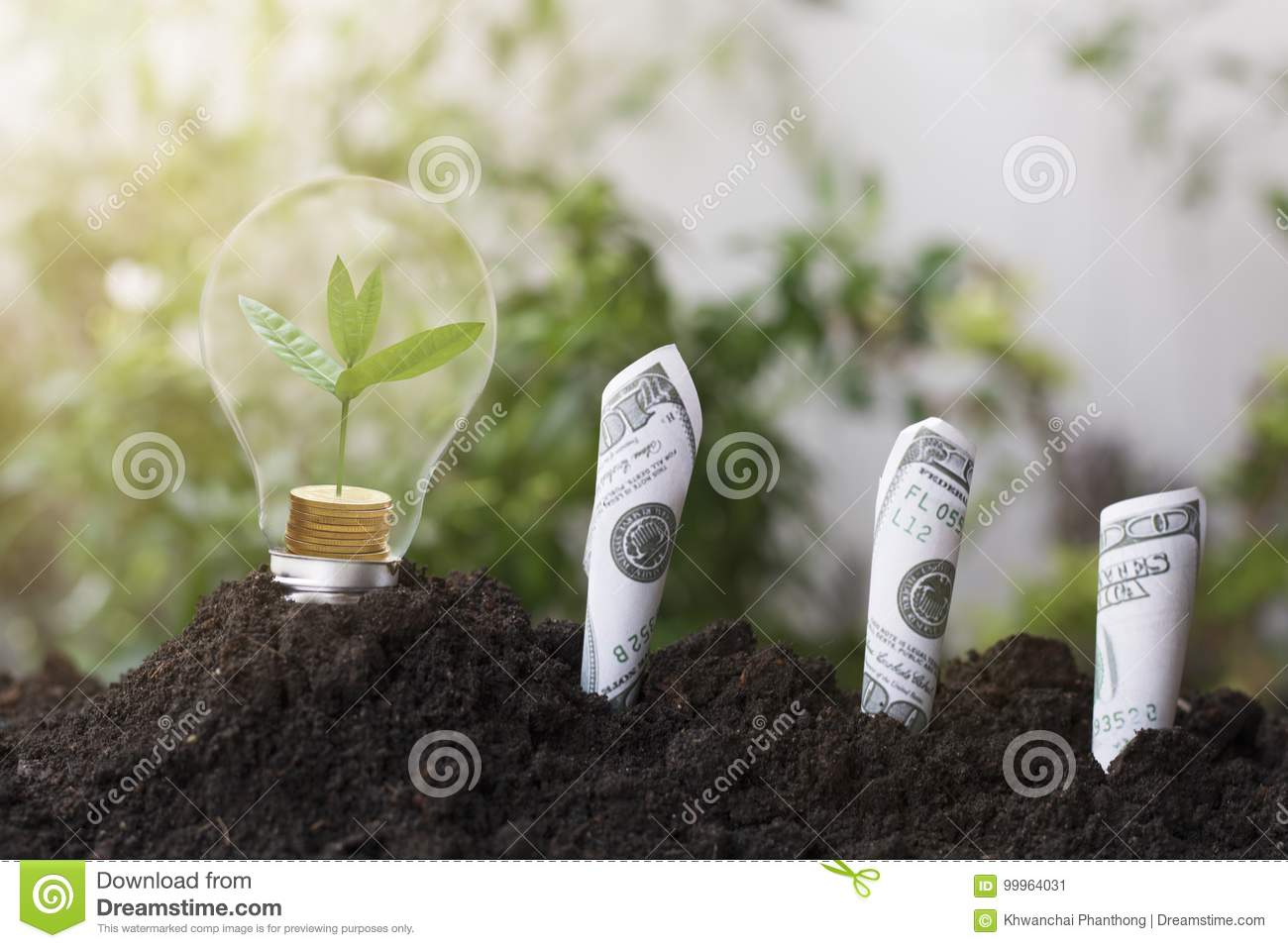 Tree planting and growth up on money coin, stacked on light bulb with soil and dollars, banknote. concept in save World environmen