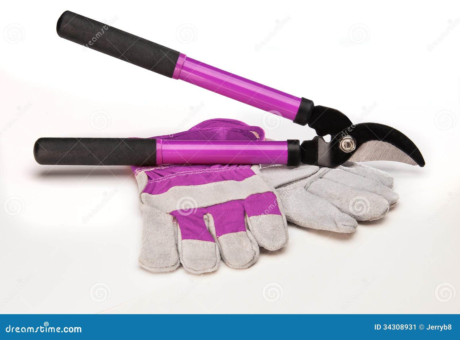 Tree Pruning Tools Stock Image Image 34308931