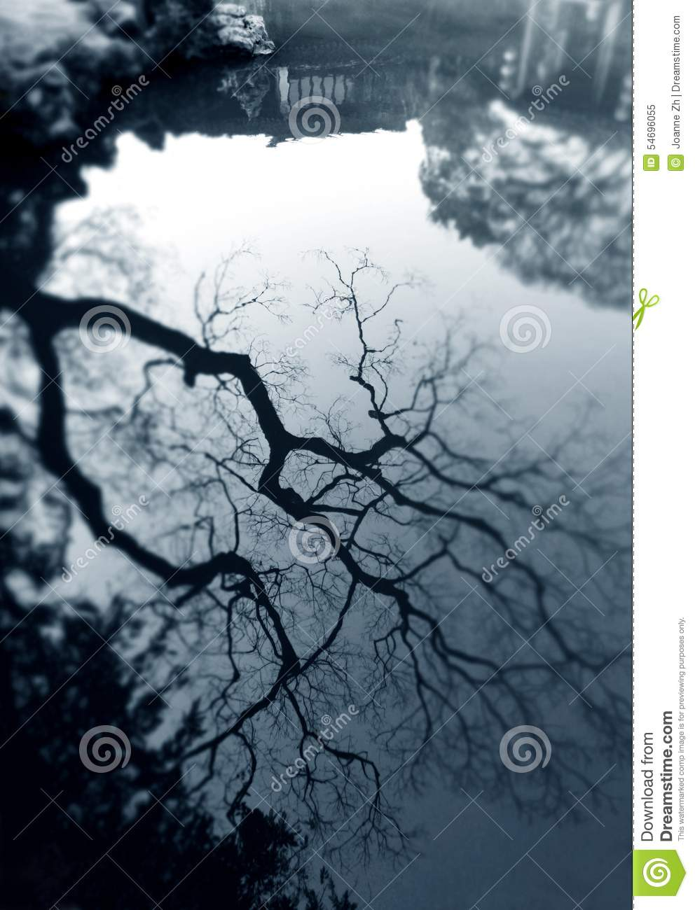 tree reflection in ancient chinese garden stock photo image
