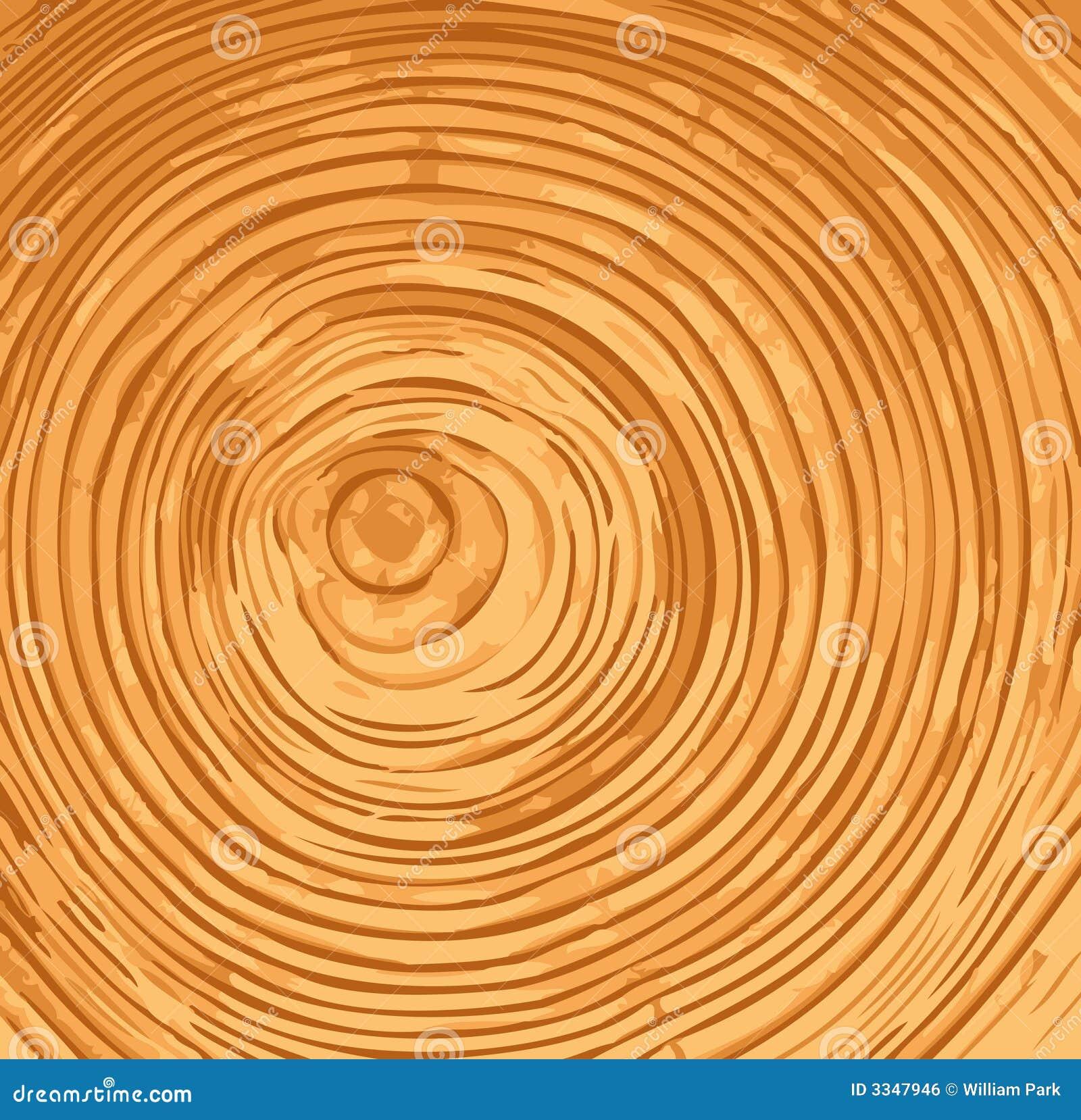 Counting Tree Rings Worksheet