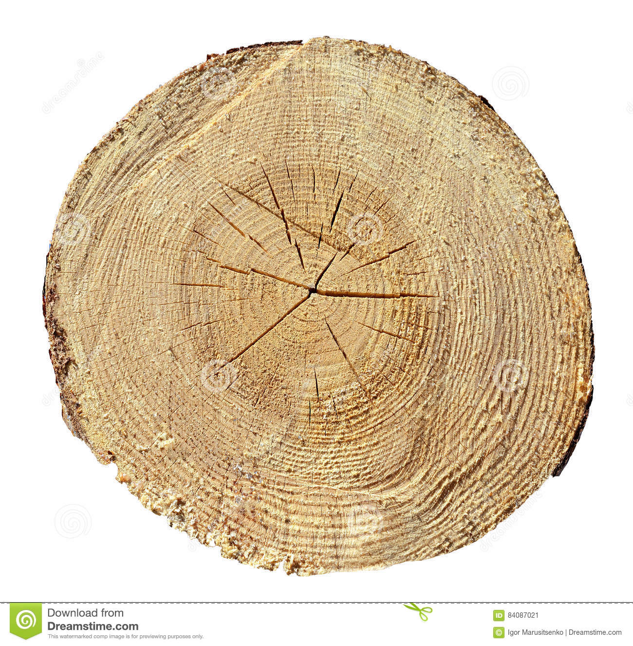 Tree rings wood log wooden texture stock image image for Tree log