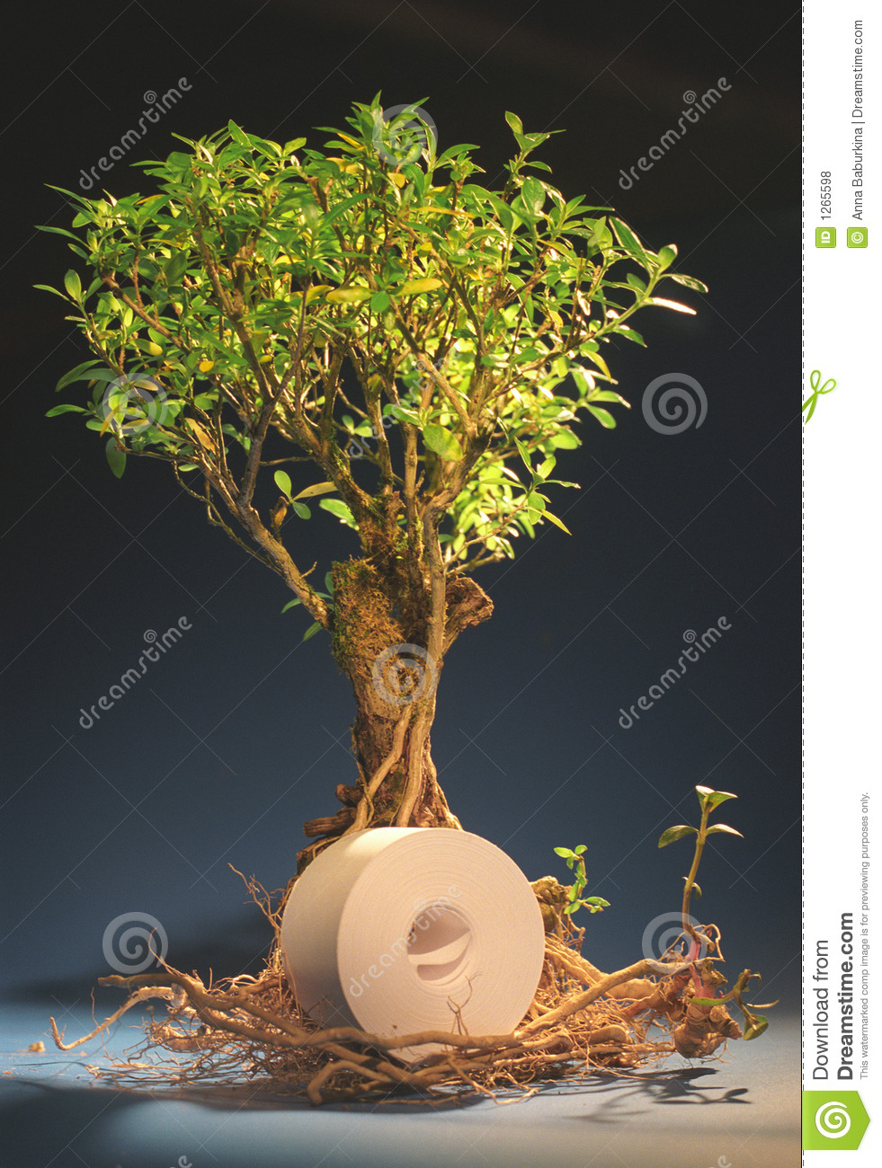 The tree with a roll of paper