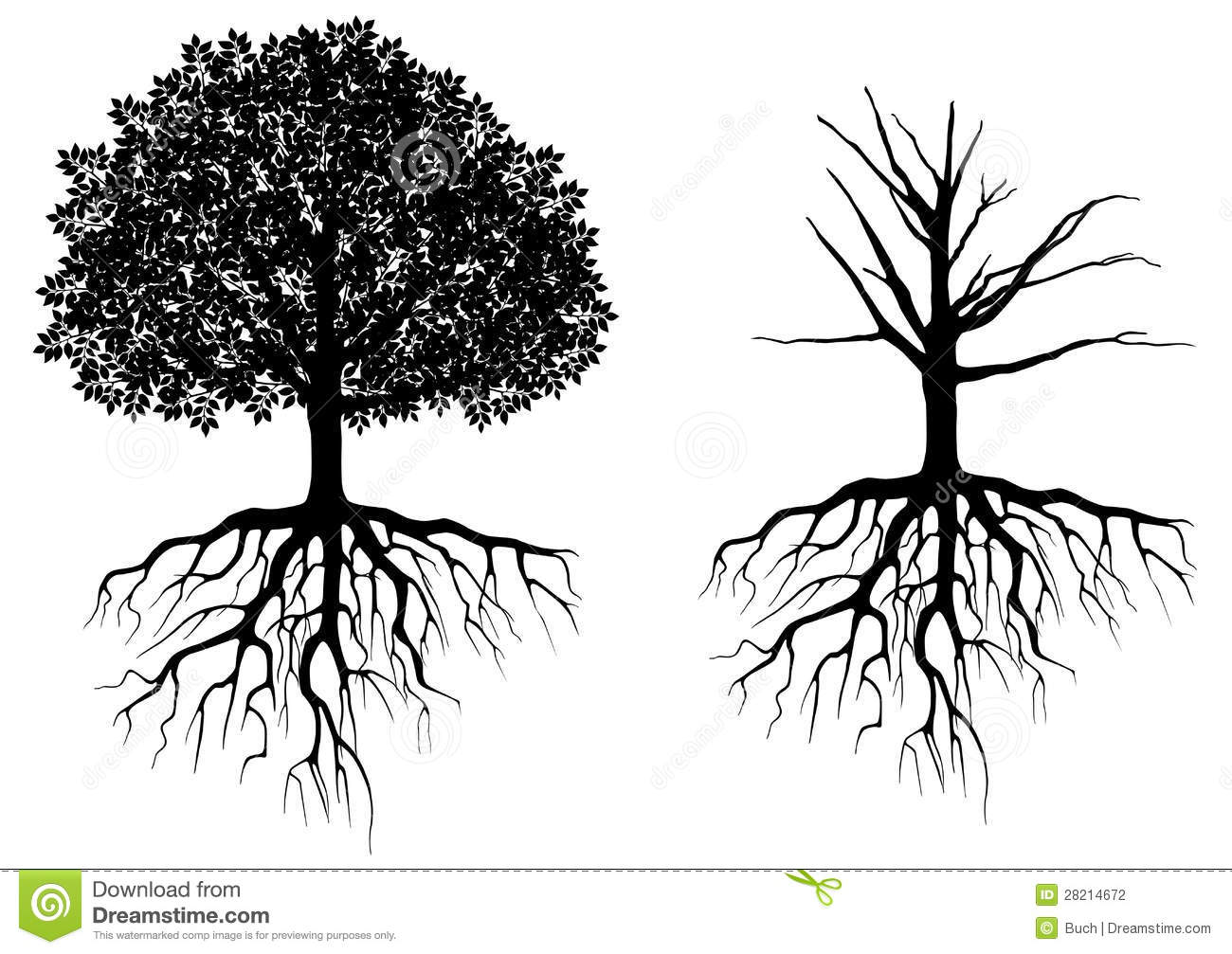 Tree with roots isolated on white. Vector illustration.