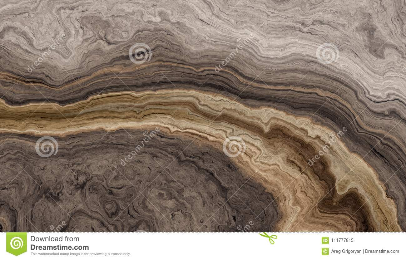 Tree roots background with wavy rings