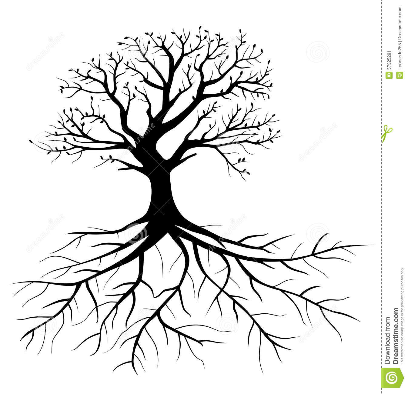 Tree With Roots Stock Vector Illustration Of Adult Element 57325281