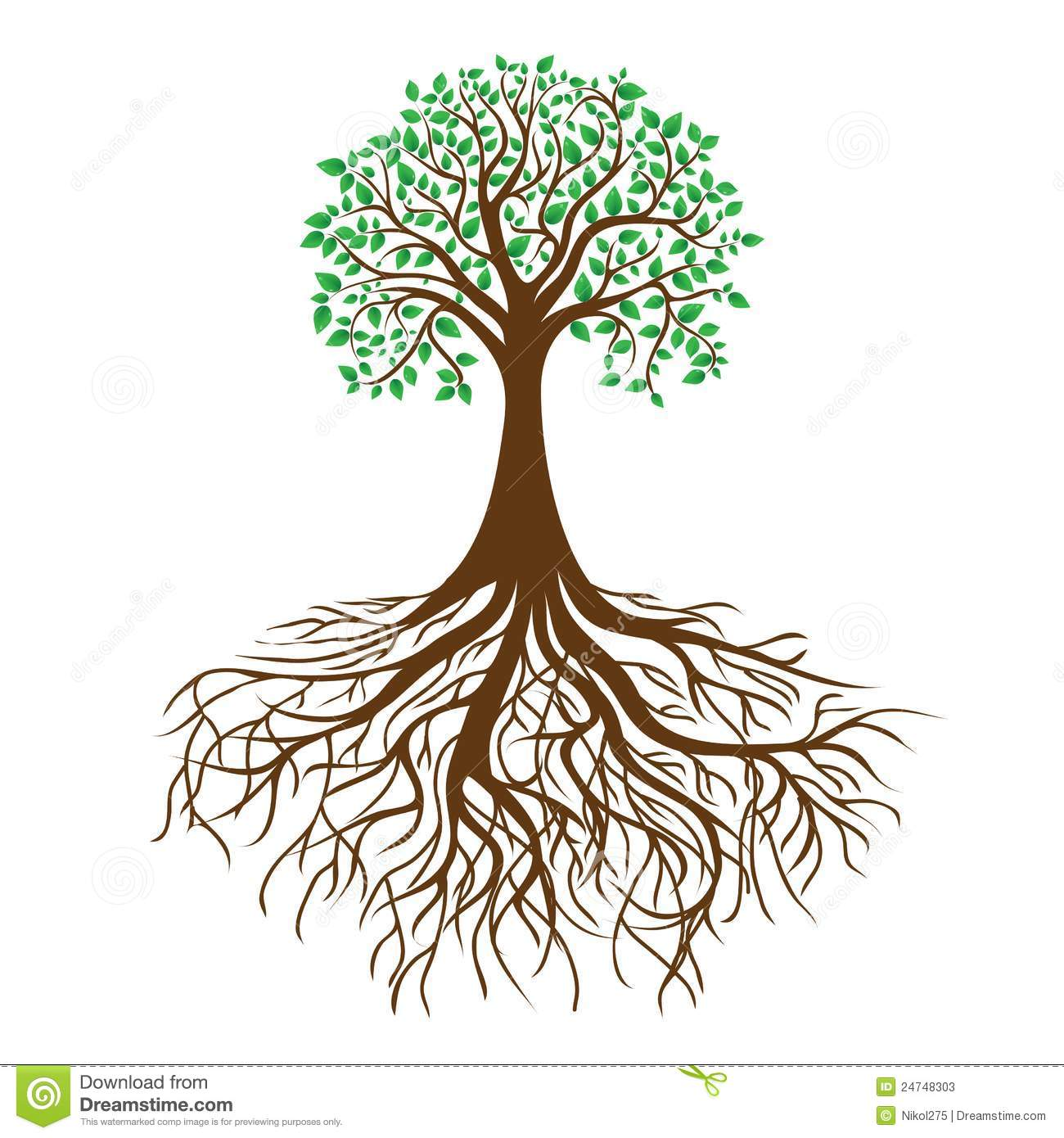 Tree With Roots And Dense Foliage Vector Stock Photos