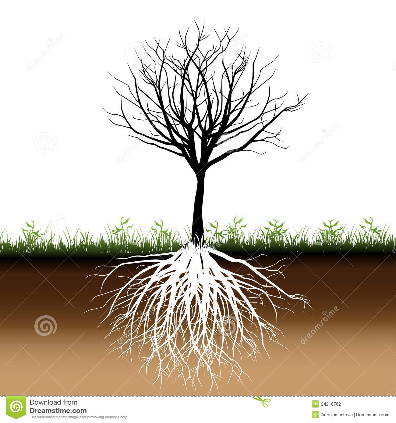 Tree Roots Silhouette Stock Photography - Image: 24216762