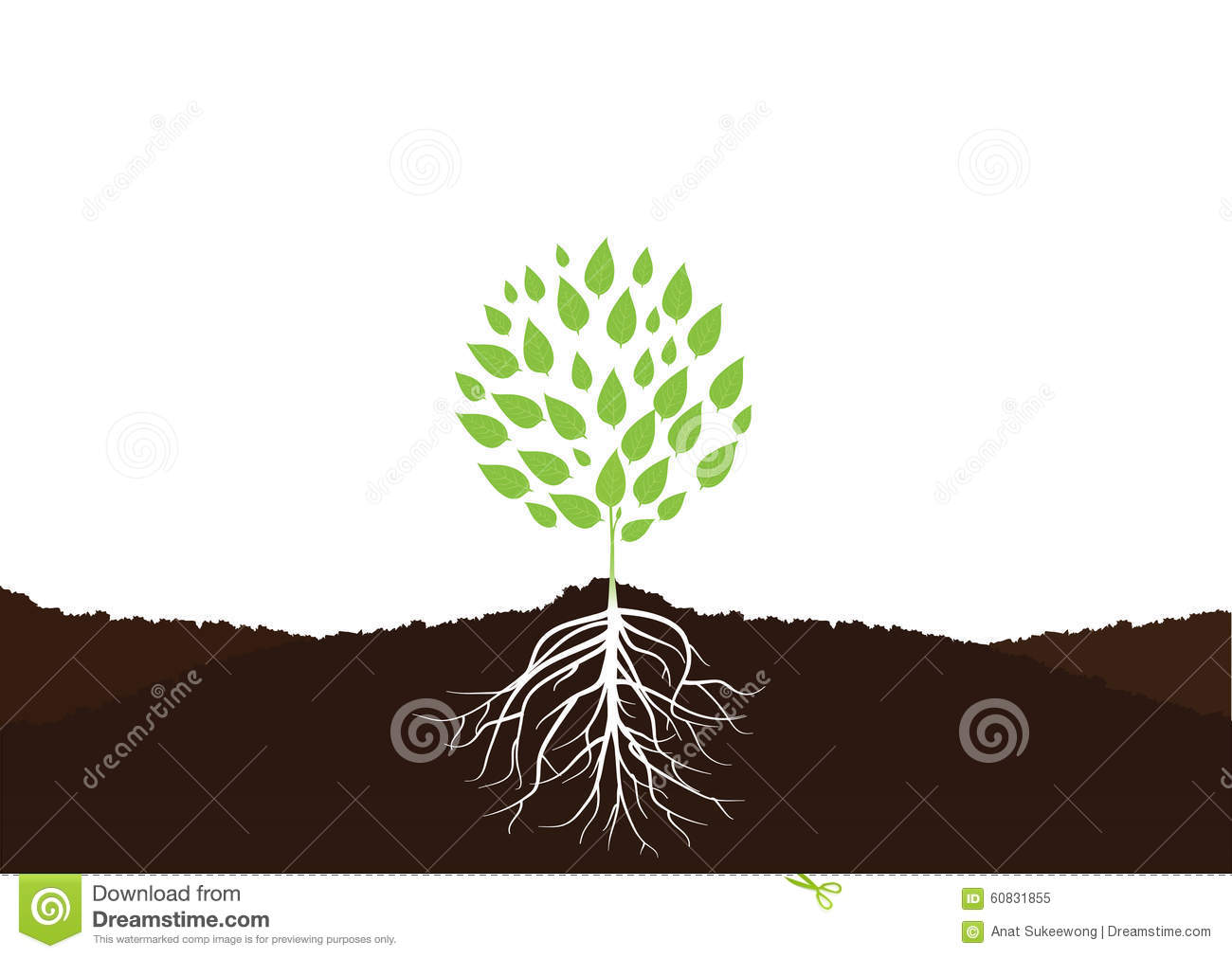 Tree With Roots, Plant Roots In Soil Vector Stock Vector ...