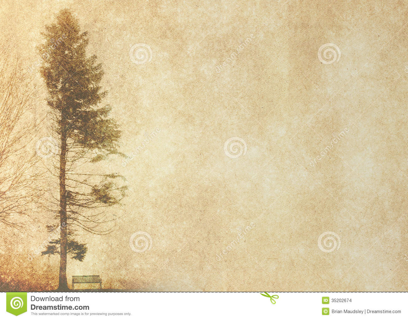 tree silhouette in winter on vintage background stock