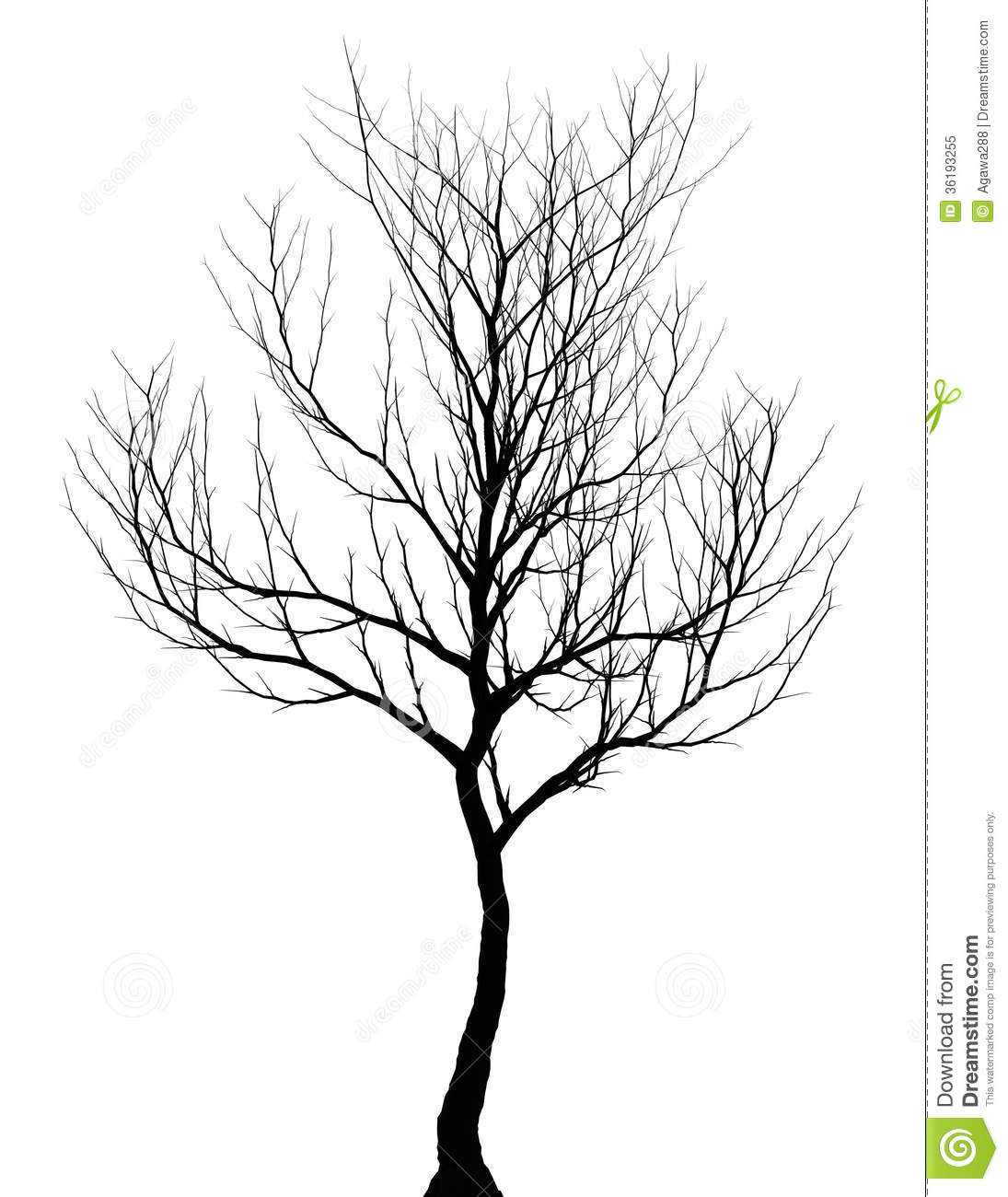 Tree Simple Dark Silhouette Isolated Royalty Free Stock Photo Image