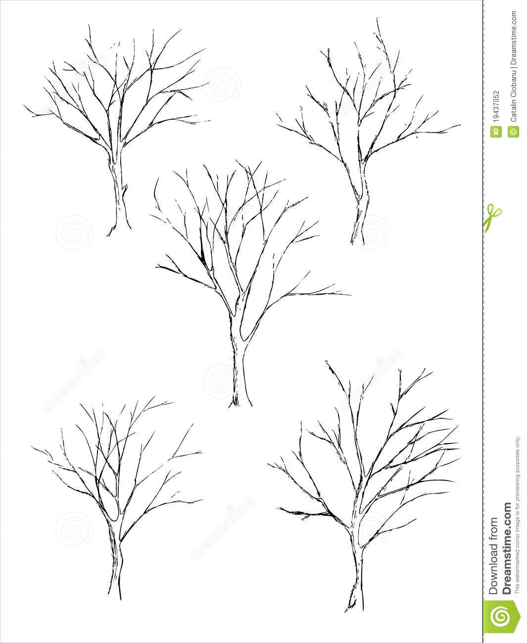 Tree Sketch Stock Photography - Image: 19437052