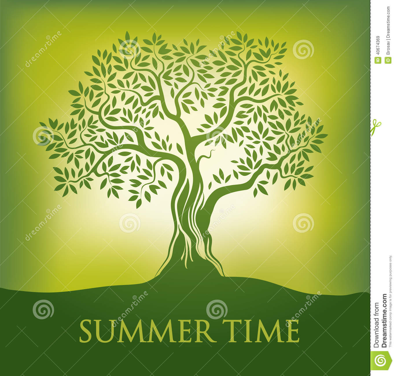 Tree. summer time.spring