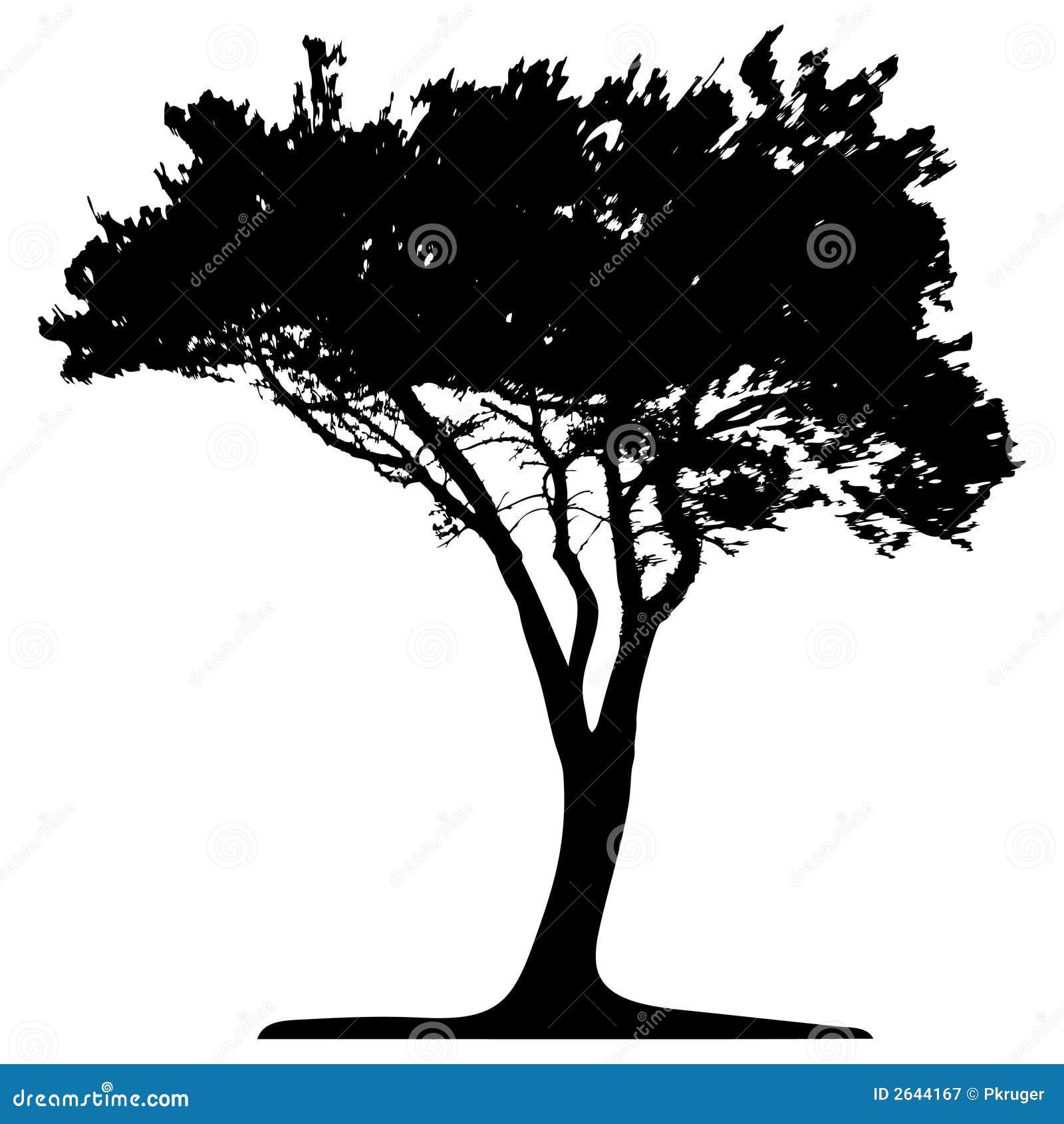 Vector Illustration Tree: Tree (vector) Stock Vector. Illustration Of Grass, Jungle