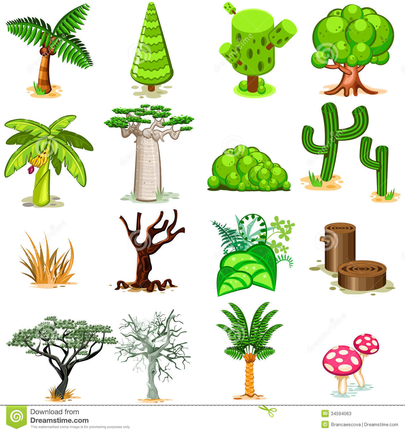 Various Green, Rainforest, Dessert, Swamp Trees Vector Illustration ...