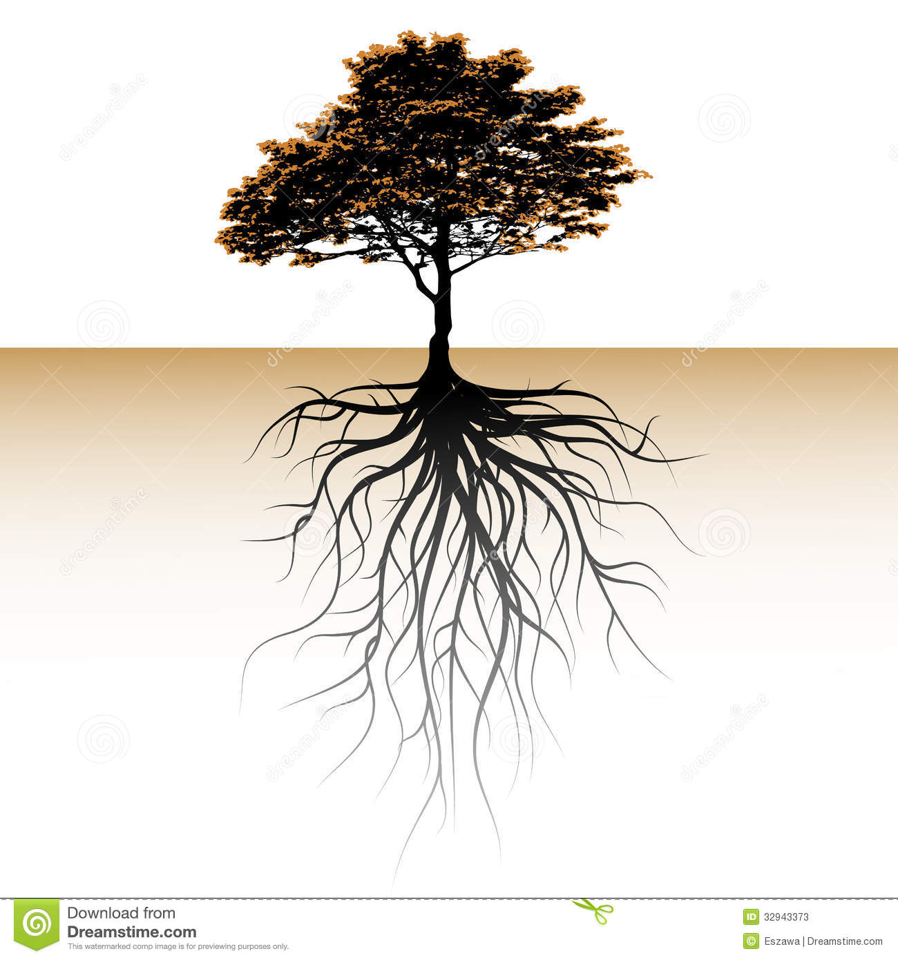 Tree With A Visible Root. Space For A Text Stock Photos - Image ...