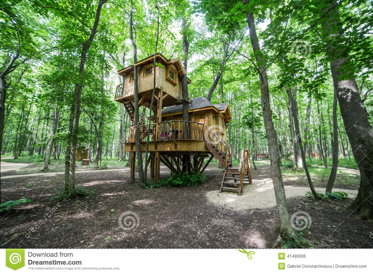 Treehouse in forrest